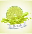 juicy lime vector image