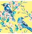Blue jay on a flowering branch Spring vector image