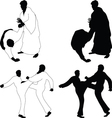 Combat sports Aikido vector image