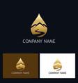 gold water drop mountain logo vector image