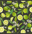 lime citrus seamless pattern floral fruit vector image vector image