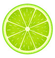lime slice clipping path isolated on white vector image