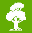 oak icon green vector image