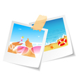 photo summertime vector image