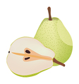 Isolated pears vector image