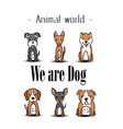 animal world we are dog puppy dogs background vect vector image