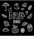 fall doodle icons vector image