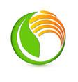 healthy green plant logo vector image vector image