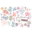 mega collection of high detailed flowers vector image vector image