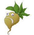 stressed turnip cartoon vector image