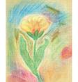 Chalk Drawn Tulip vector image