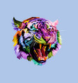 colorful angry tiger on pop art style vector image