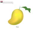 Fresh Mango A Famous Fruit in Yemen vector image vector image