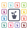 houseplant flat icons set vector image vector image