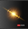 light flash or sunshine effect icon vector image vector image