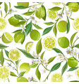 lime seamless fruit pattern floral citrus vector image vector image