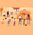 people agricultural workers picking seasonal vector image vector image