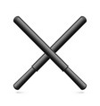 rubber batons vector image vector image