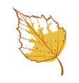 birch autumn leaf icon seasonal yellow foliage vector image