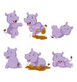 collection happy hippo with various posing vector image vector image