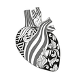 Coloring of heart vector image vector image