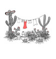 funny hand drawn with jars saguaro blue agave vector image