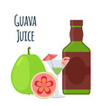 guava juice fruit alcohol flat style tropical vector image