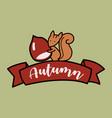 cartoon funny squirrel holding pine cone vector image vector image