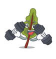 fitness chard character cartoon style vector image