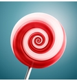 lollipop closeup vector image