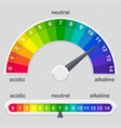 ph value scale meter for acid and alkaline vector image vector image