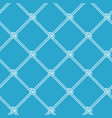rope net vector image vector image
