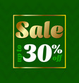 sale banner discount 30 special offer sale green vector image vector image