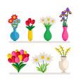 vases flowers vector image