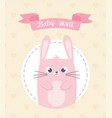 bashower pink rabbit decoration ribbon card vector image