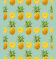 geometric pineapple seamless pattern vector image vector image