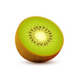 Realistic icon of kiwi sliced juicy