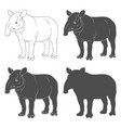 set black and white tapir vector image vector image