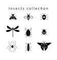 set different insects vector image vector image