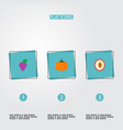 set of vitamin icons flat style symbols with vector image