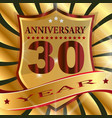 anniversary 30 th label with ribbon vector image vector image