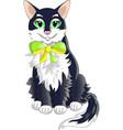 cat black vector image