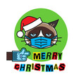 grumpy cat in mask gloves and christmas hat vector image vector image