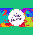 hello summer tropical background in boho style vector image