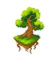 Isometric tree vector image