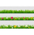 summer flower border vector image vector image