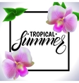 Tropical summer vector image vector image