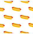 hot dogs pattern vector image