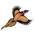 a stylish multi-colored flying pheasant vector image vector image