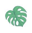 big cordate tropical leaf hand drawn vector image